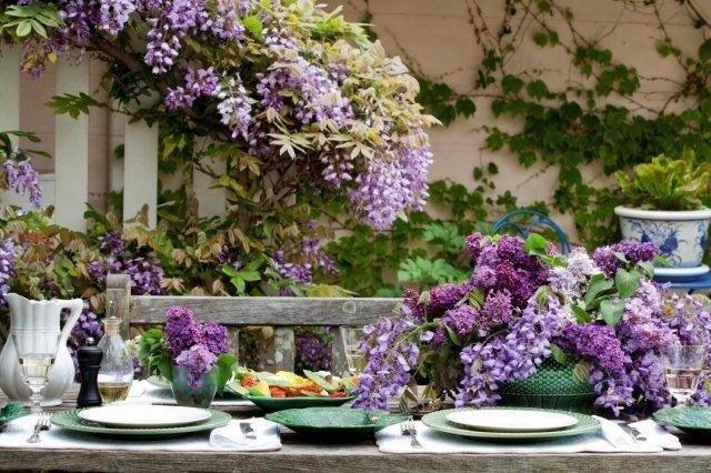 7 Wisteria and Lilac